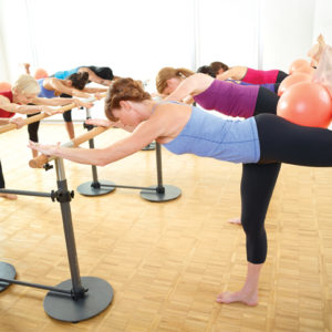 Total Barre Foundation Course